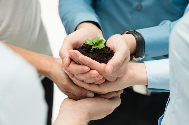 varias manos cuidando planta 2